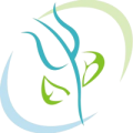 Centro Psicológico Integral PsicoDescubrir